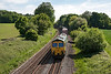 4th Jun 13:  4M68 is the 14.50 Southampton to Birch Coppice.    In the hands of 66534 it is captured from the bridge in Park Lane Silchester.  Unfortunately shots from the left or right of this bridge are no longer possible due to Hawthorne and Bramble bushes.