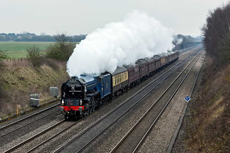 19th Mar 13:  Pictured at Shottesbrooke is 60163 'Tornado' making fror Worcester from Paddock Wood on a very dull morning.