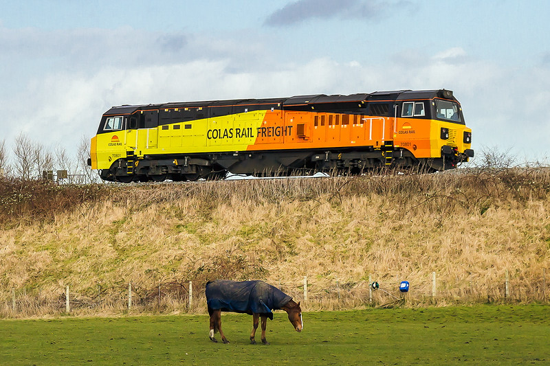 24th Feb 2015:  One horse power and lots of horse power at Penleigh.  70801 is working from Eastleigh Arlington to Westbury and looks to have had a serious wash and brush up.  I wonder why?