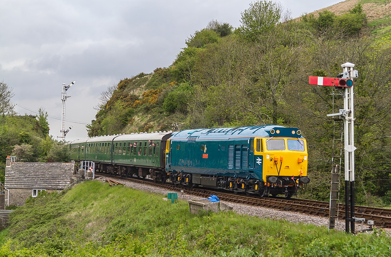 8th May 2015:  During the Swanage Deisel Gala 50035 'Royal Oak' arrives at Corfe Castle