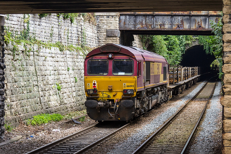 14th Aug 2016:  66003 dead on the rear od 6W98 from Pembury to Westbury about to enter the tunnel at Bradford on Avon