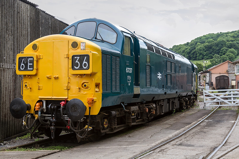 25th Jun 2016:  Built in 1962 it was subsequently renimbered 37057 inder the TOPS renumbering scheme'  It was withdrwn in August 1999.  It spent a year in france working on construction trans before returning to Wigan for storage .  It was bought for preseration in 2005 and is seen here at it's current base at Buckfastleigh
