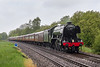 21st May 2016:  The heavy drizzle had lessened somewhat as 60103 'Flying Scotsman', working the day's Cathedrals Express from Paddington to Salisbury, passes the crossing at Sherrington Lane in the Wylye Valley.  Two elderly  photographers and  half a dozen elderly dog walkers were chaperoned by two Network Rail staff to ensure that we did not trespass. !!!  If only !!!    47580 was at the rear