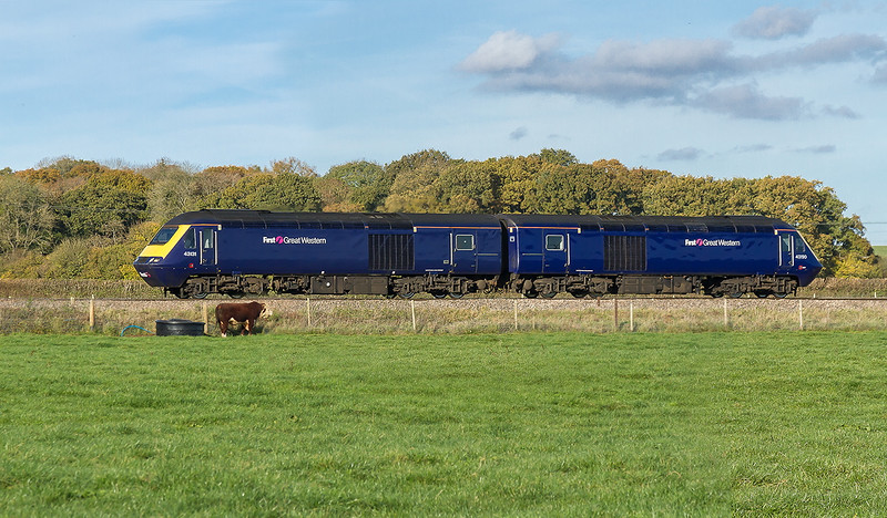 11th Nov 2016:  The massive bull had a mate just out of shot which made me decide not to go any closer to the fence than stay outside the gate.  43131 & 43190 are travelling from Old Oak Common to Laira as 0Z77. The location is Pot Lane in Berkley near Frome