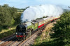 12th Sep 2016:  LNER A1 Pacific 60163 Tornado powering the last Torbay Express of the season is captured at Strap Lane in Upton Noble.  1Z27 left Bristol Temple Meads at 8 am and is heading for Kingswear