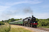 20th Jun 2017:  BT 2-6-4 Tank 80146  between Nordern and Corfe Castle