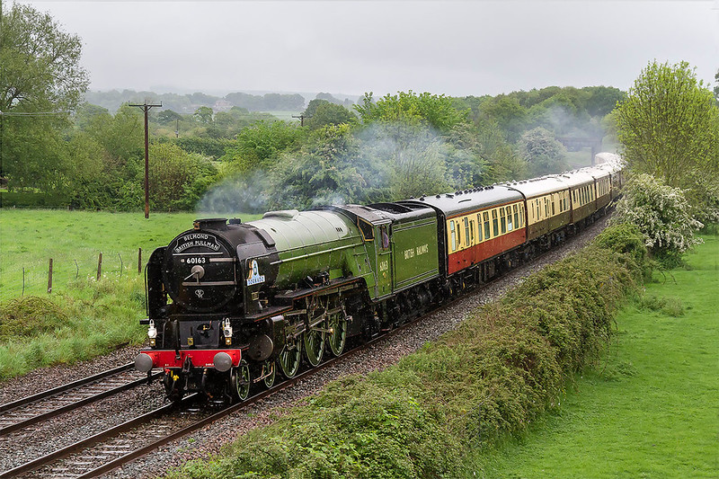 17th May 2017:  On a morning of steady rain 60163 Tornado is rounding the curve through Great Cheverell as it powers 1Z91 the Belmond Briish Pullman from Victoria to Bath and  Bristol Temple Meads