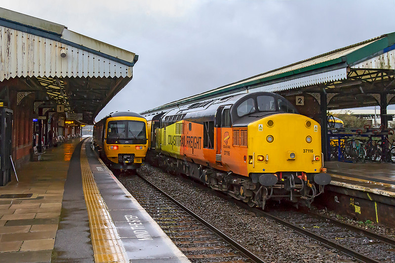 5th Dec 2018:  On the rear od 1Z22 is 37116 that is powered by 37219 and is making for Weymouth from Tyseley.  On the left is 165134 that will form 2D11 the 14.38 to Bristol Parkway and just in sight on the right is 2M12 the 14.10 Frome to Swindon. I have just realised what the silver stripe on the left hand side of the shot is--my walking stick !