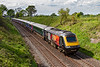 29th Apr 2019:  43172 'Harry Patch' on the front of 1A87 the 12.53 from Plymouth to Paddington at Wichcombe Wey near Gt Cheverell.  With only 16 days to go before the HSTs vanish on the Paddington services a celebrity power car is worth a picture now as it may be the last time that I can do it.