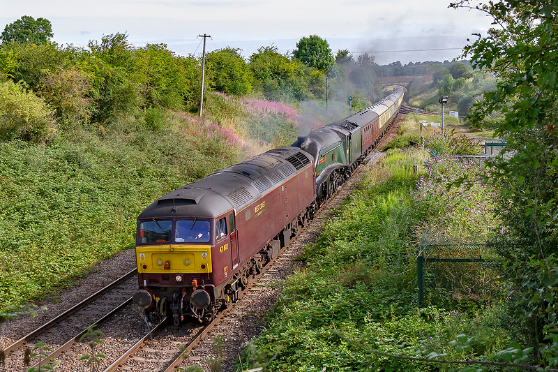 28th Jul 2019:  After the 'Duchess of Sutherland' yesterday caused some fires west of Castle Cary the decission was taken that the day's Torbay Express would also have a deisel on the front.  At Hawkeridge 60007 'Union of South Africa' is hidden by 47802 as they haul 1Z27  from Bristol Temple Meads to Kingswear..  I say 'THEY' but of course the kettle was not doing much !