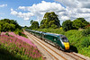 11th Jul 2020:  Speeding along the Frome Avoider is 802103 with 1A76 the 06.42 from Penzance to Paddington.  Just an ordinary train but I could not resist the sky and the Rosebay Willow Herb.