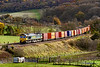 13th Nov 2020:  About to run through Freshford in the Avon Valley is 66517 woth 6V54 from Southampton Maritime Container Terminal to Avonmouth.  Good to be able to capture it with a full load