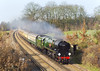 17th Feb 07:   In perfect winter sunlight 35028 Clan Line coasts through Lyne.  The VSOE running as 1Z96 was going to Southampton from Victoria