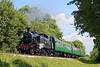 2nd Jun 07:    41312 is barking well as she climbs through Chawton Woods with the first sevice of the day from Alton. A few more pictures are in my Steam Gallery