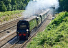 2nd Aug 07:  The Sunny South Special wearing a Cathedrals Express headboard for the journey from London to Weymouth and return. Captured here hammering through Pirbright on the outward leg