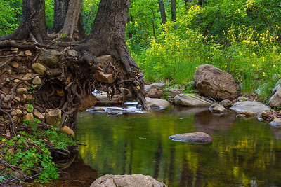 Christopher Creek, See Canyon