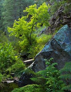 Babershop Canyon, U-Bar Trail