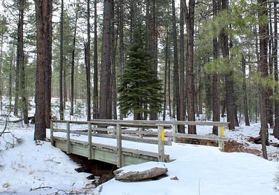 Wooden footbridge near Willow Springs Lake (2018)