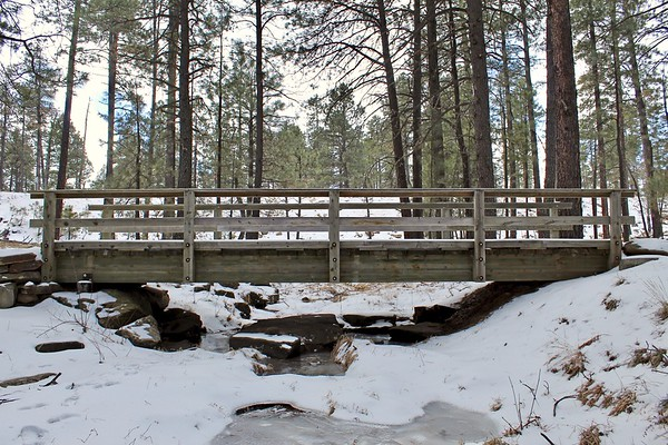 Wooden footbridge near Willow Springs Lake (2018)