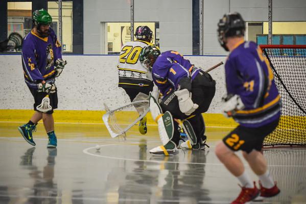 Mohawks Lacrosse 2016