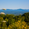 Million Dollar View, Mohonk Preserve, Ulster County, New York, USA
