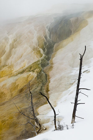 Mammoth Hot Springs in Yellowstone National Park (Wyoming)