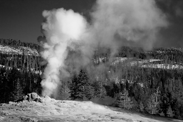 Old Faithful in Yellowstone National Park (Wyoming)