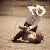 Cowboy tripping a steer (Montana)