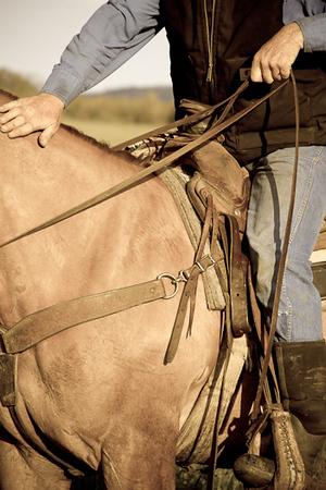 Cowboy (Montana)