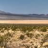 037 Silurian dry lake
