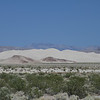 004 Dumont Sand Dunes, Silurian Valley