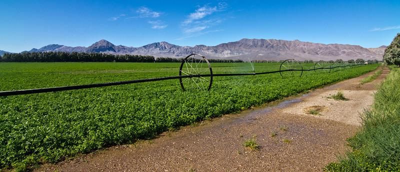 047 Beverly Hills Dairy, Amargosa Valley, Nevada