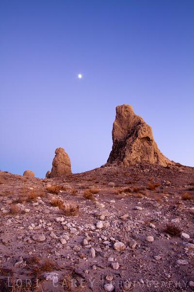 Jupiter and Tufa, Trona Pinnacles