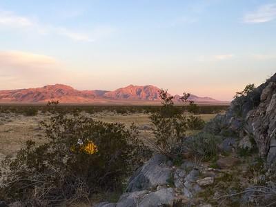 2015 Wilderness Volunteers Mojave National Preserve Service Trip