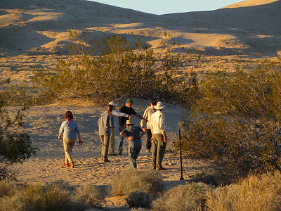 Wilderness Volunteers: 2017 Mojave National Preserve Service Trip