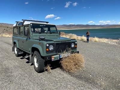 At Mono Lake, picked up a tumbleweed!