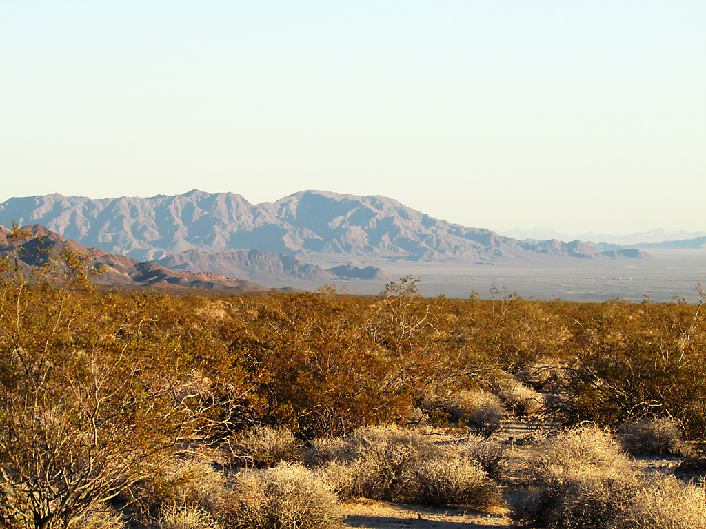 Mojave Trails, California, Thanksgiving break, 2014.