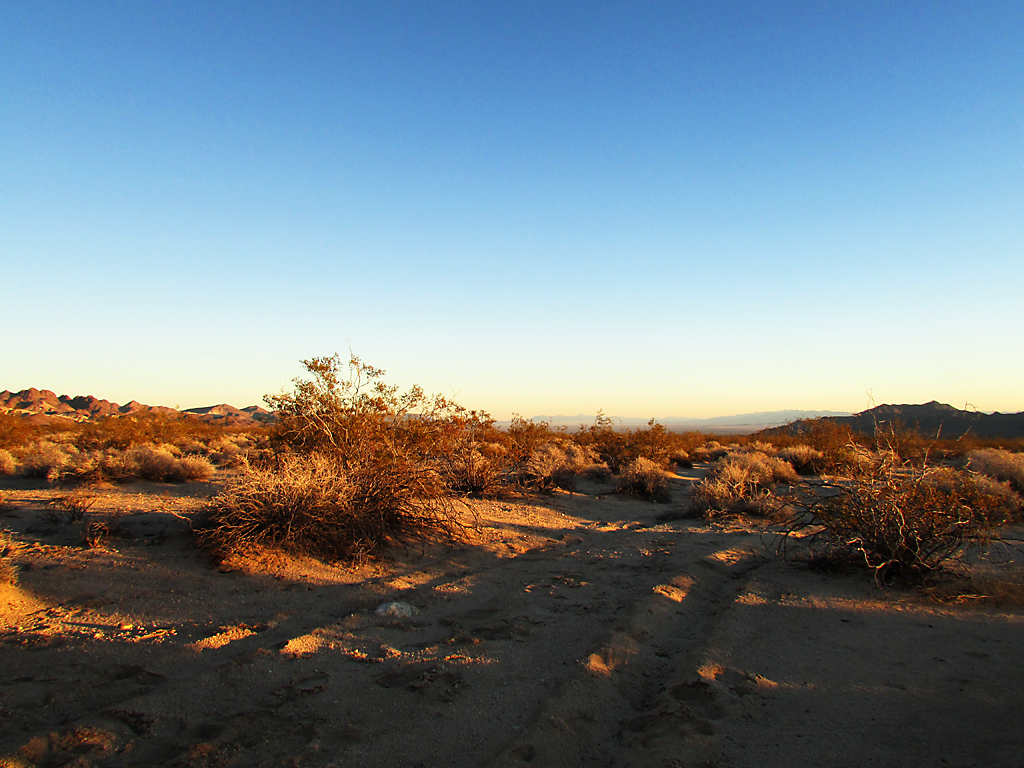 Mojave Trails, California, Thanksgiving break, 2014.