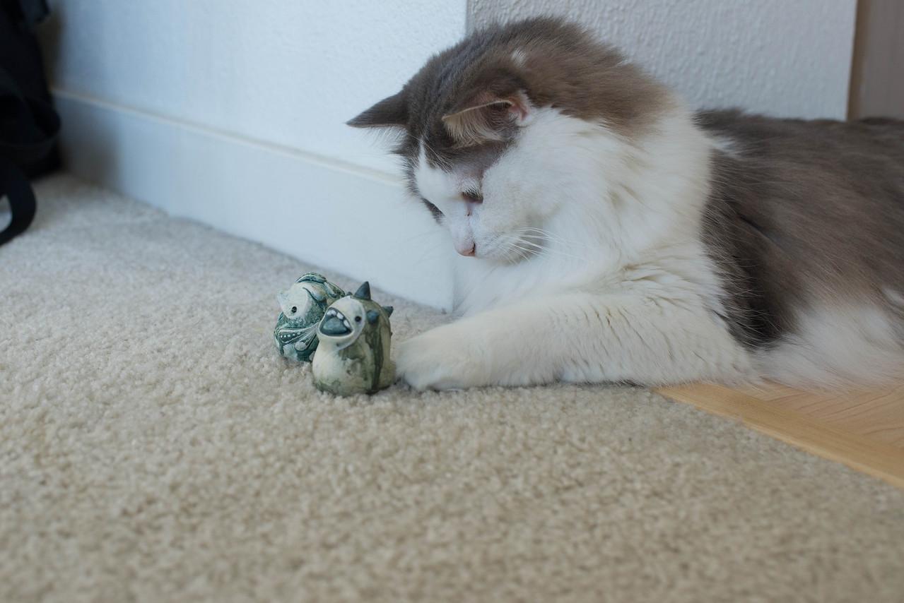 Mokono_Sloke_And_The_Kitty-13
