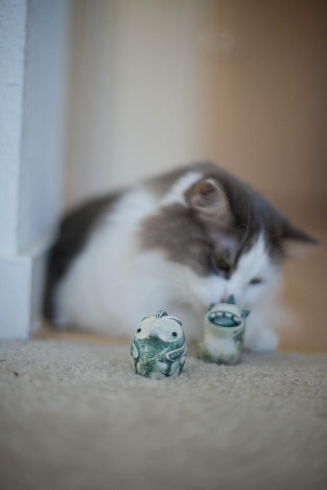 Mokono_Sloke_And_The_Kitty-22