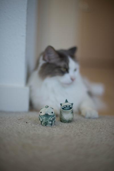 Mokono_Sloke_And_The_Kitty-21