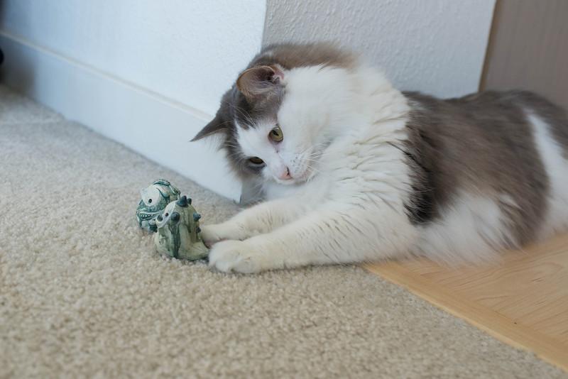 Mokono_Sloke_And_The_Kitty-16