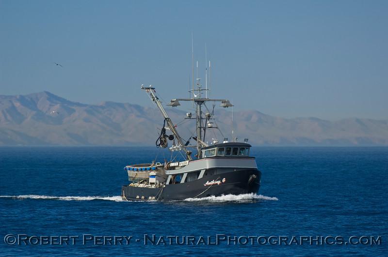 vessel squid seiner Anthony G 2009 01-19 SB Channel - 160