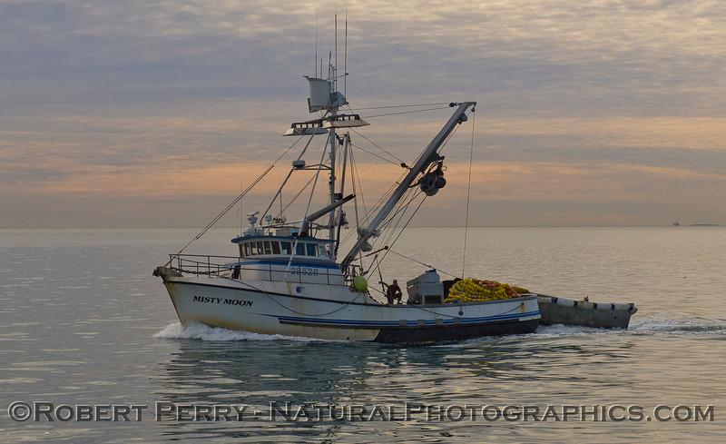 vessel squid seiner Misty Moon at dawn 2009 01-19 Ventura Harbor - 405