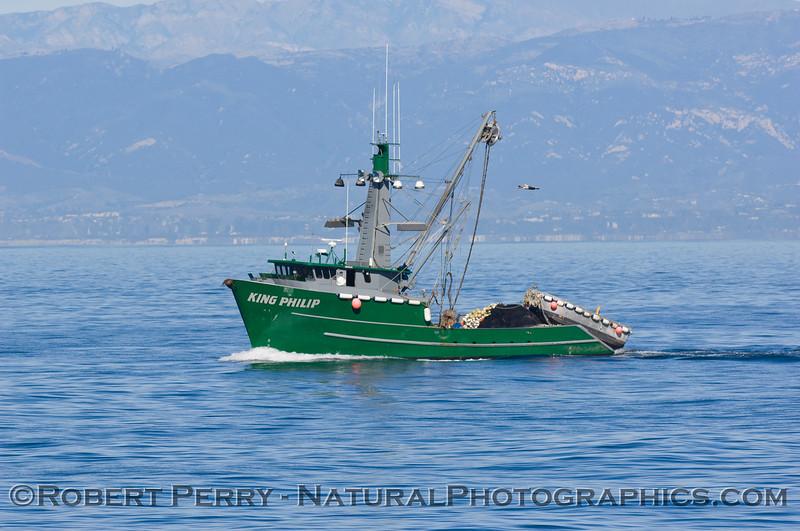 vessel Loligo seiner King Philip 2009 01-11 SB Channel - 6168