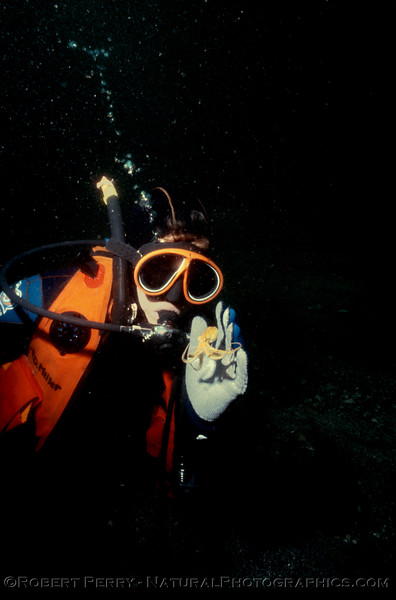 Octopus juv & diver Log 1215 1986-03