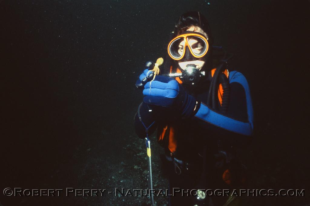 Octopus juv & diver Log 1215 1986-03-002