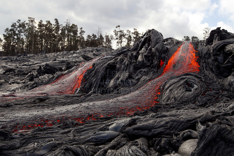 Lava advances down the PULAMA PALI, HAWAII, destroying all forests in its path.<br /> This lava flow covered Jack Thompson's home and property two days later (only 1000-feet from here). You can see the images, video and read my story about this on my Hawaiian Lava Daily blog that is linked in my header bar.<br /> <br /> IMAGE #LRH_0587