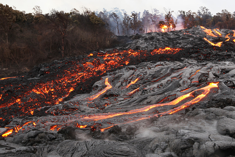 Royal Gardens_2800 <br /> <br /> Two types of lava rivers: a`a on the left and pahoehoe more fluid-like on the right