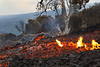 Advancing a`a lava clinks and rolls along; taking out all life forms in its path.<br /> <br /> Image # Royal Gardens_2758